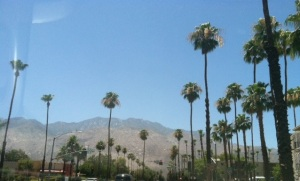 Palm Springs, California ~ sunny skies and 100 degree weather